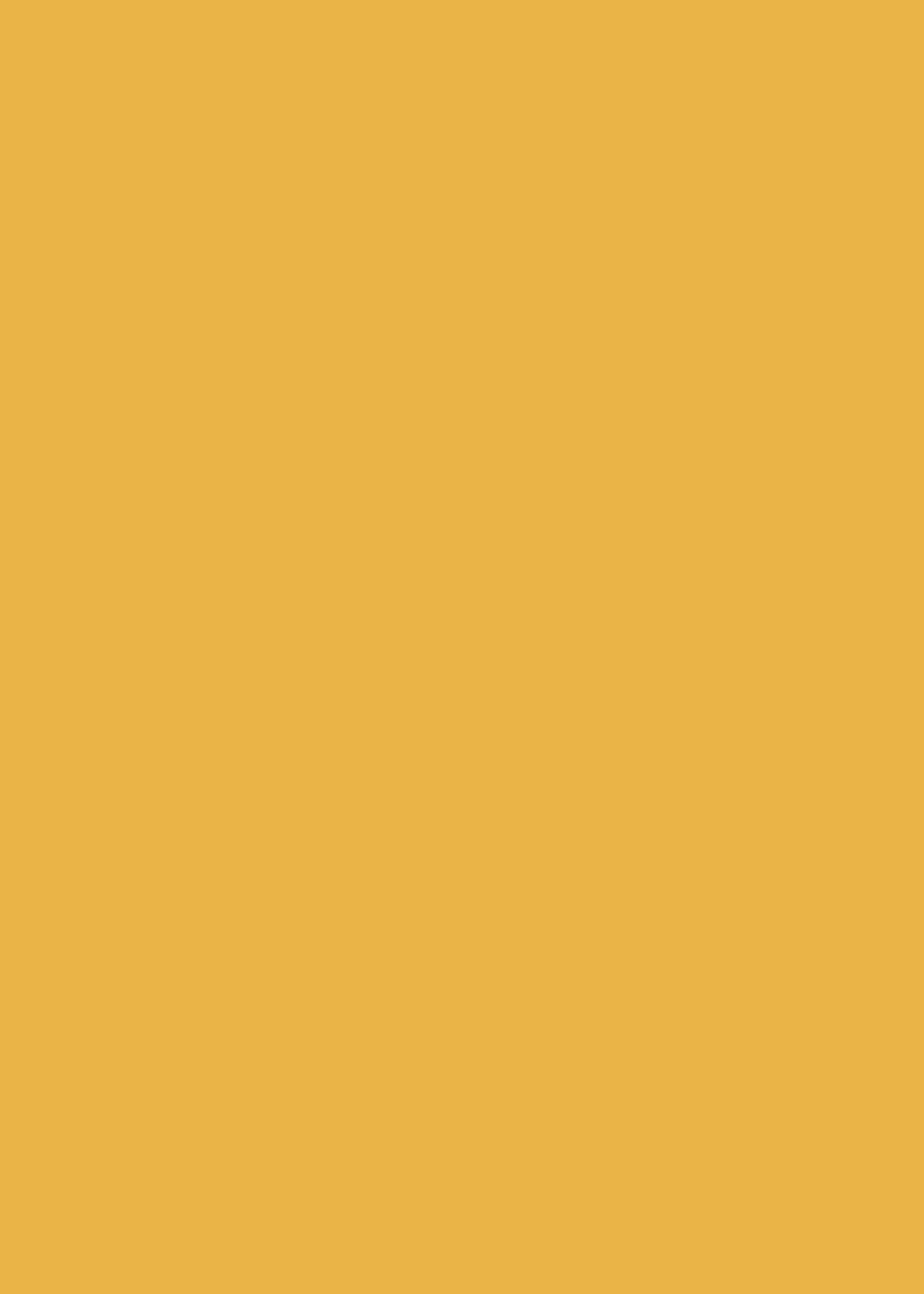 Meterware Klebefolie Uni senf