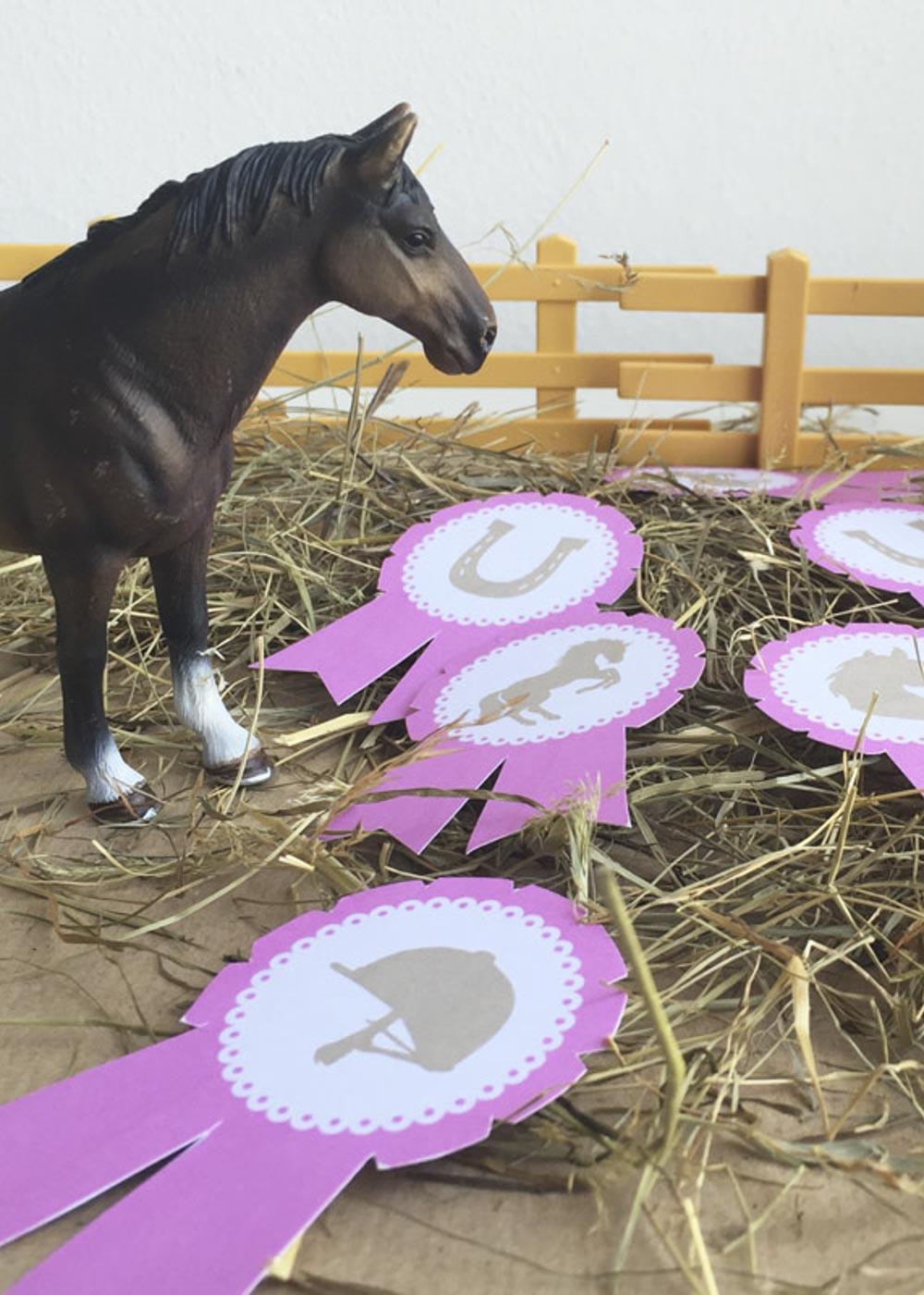 Kindergeburtstag Pferde Orden